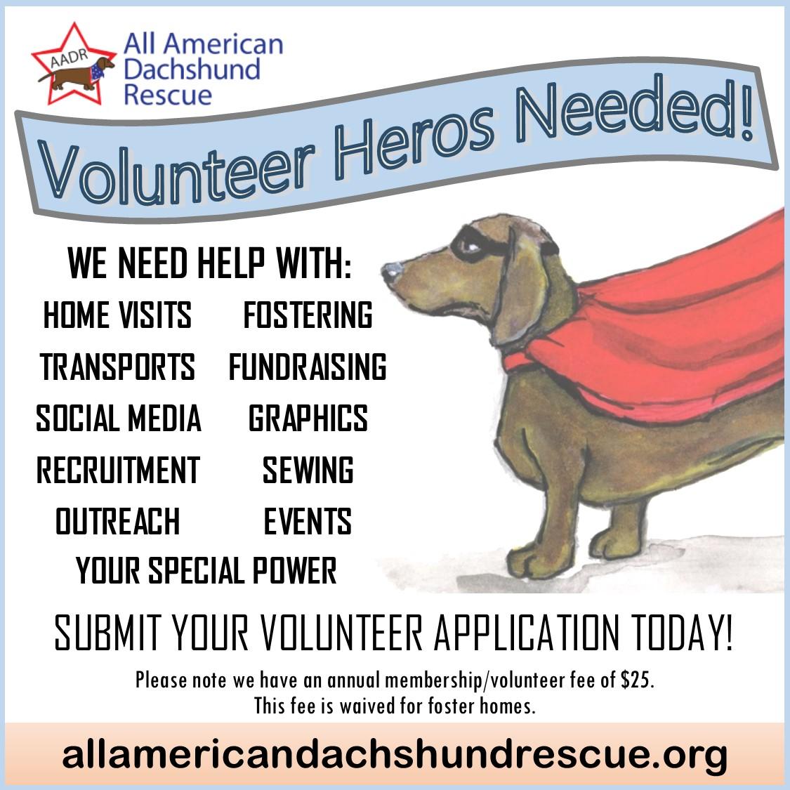 Volunteer Heros Needed Graphic