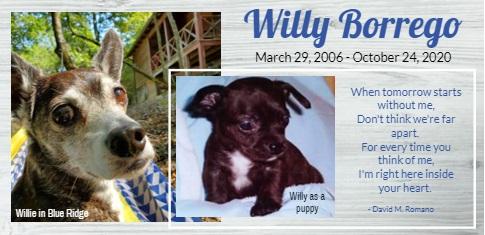 Willy Borrego_In Memoriam