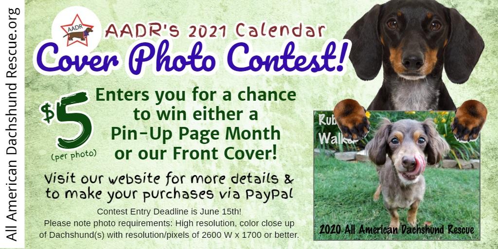 2021 Calendar Cover Contest 1