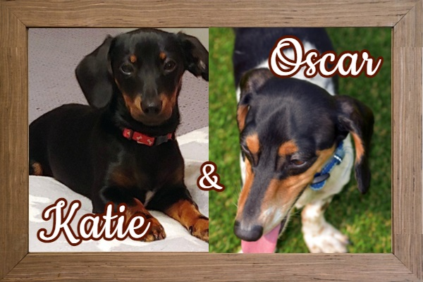 Katie and Oscar_FP Photo