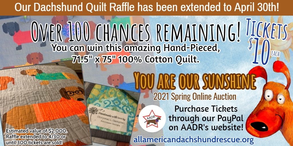 2021 Spring Auction_Quilt Raffle