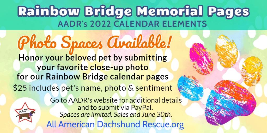 2022 Calendar Rainbow Bridge extention