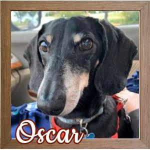Oscar FP Photo 2
