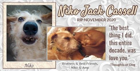 2020 In Memoriam_Niko Jack Cassell