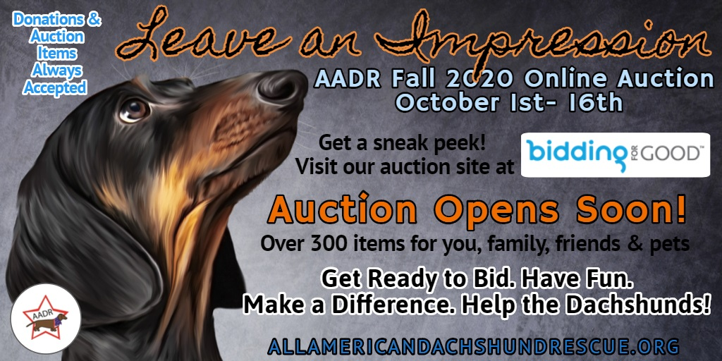 2020 Fall Auction Begins Soon