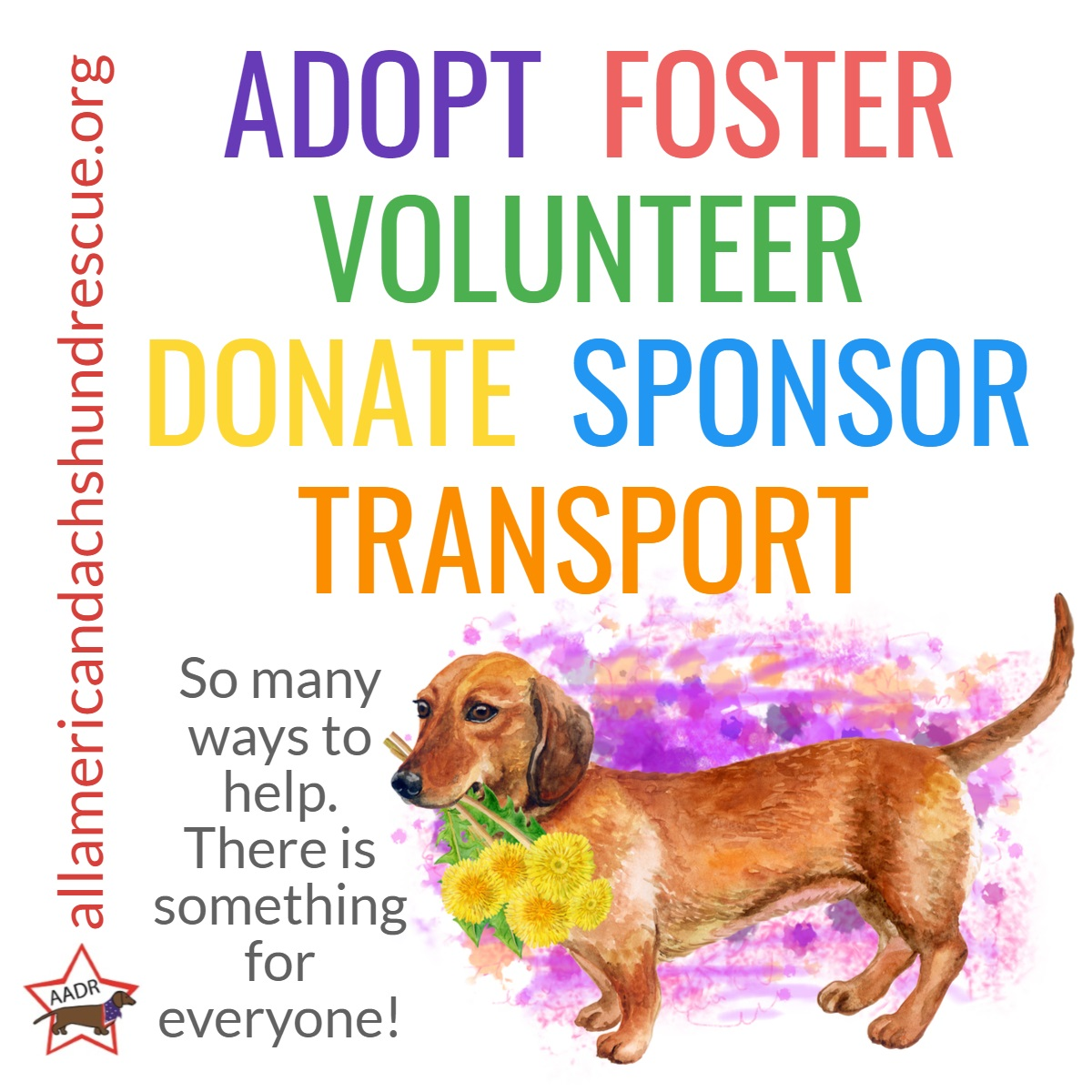 Volunteer_2020