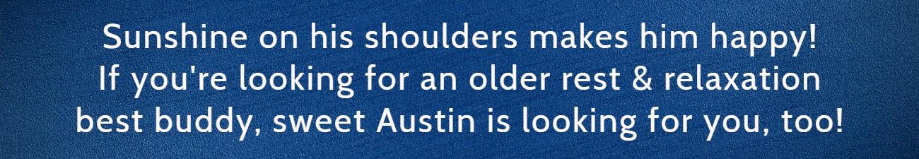 Austin FP Banner