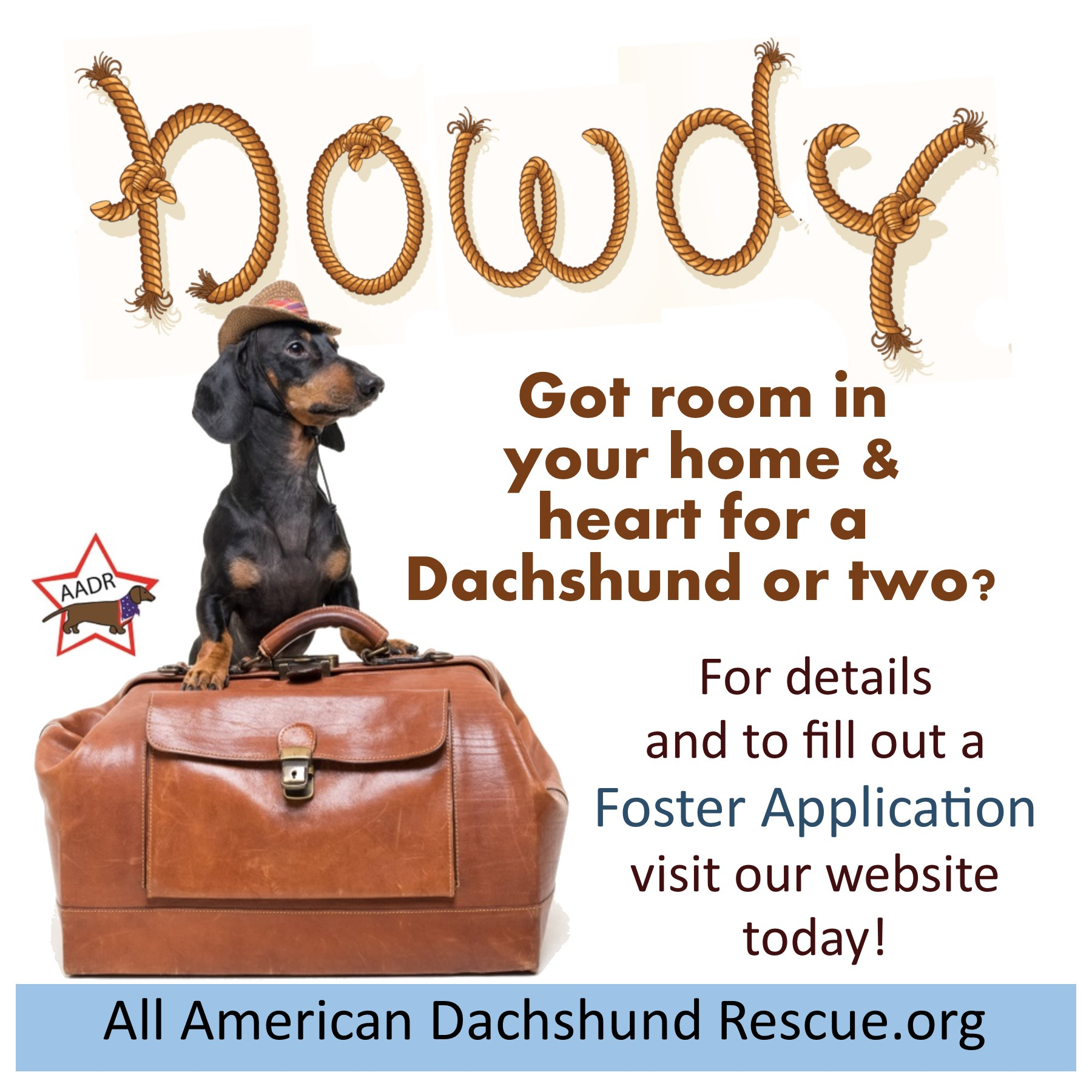 Foster Homes Needed_Howdy