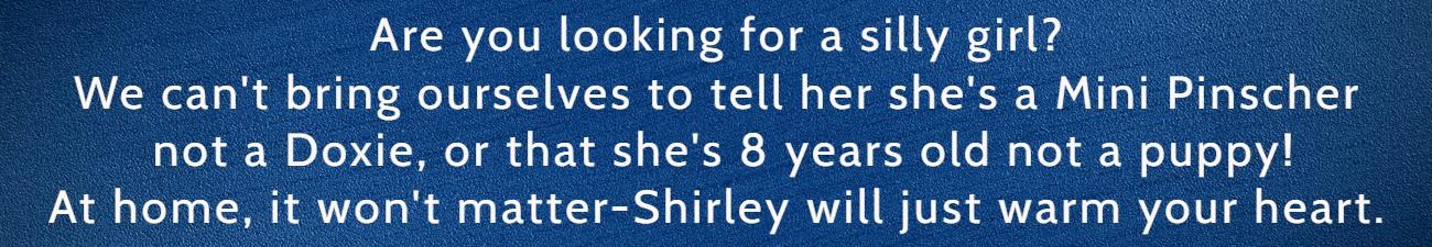 Shirley FP Banner