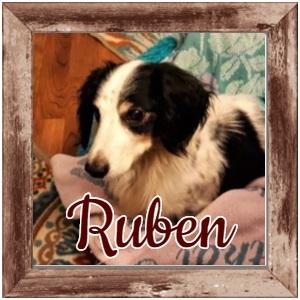 Ruben FP Photo