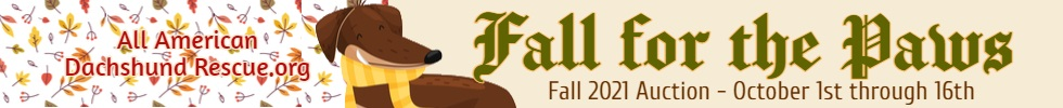 2021 Fall Auction_Banner