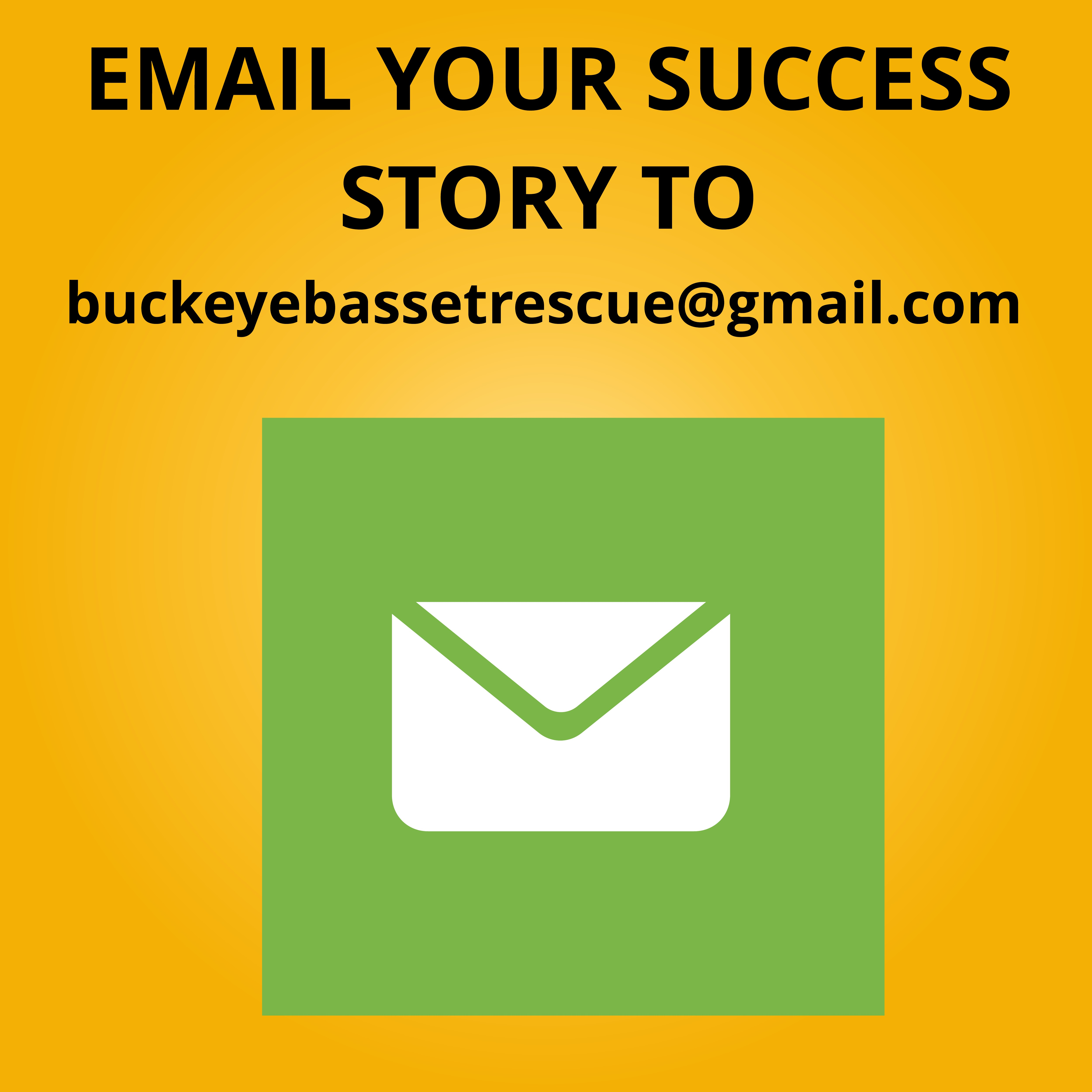 Email Success Stories