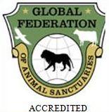 Global Federal Seal