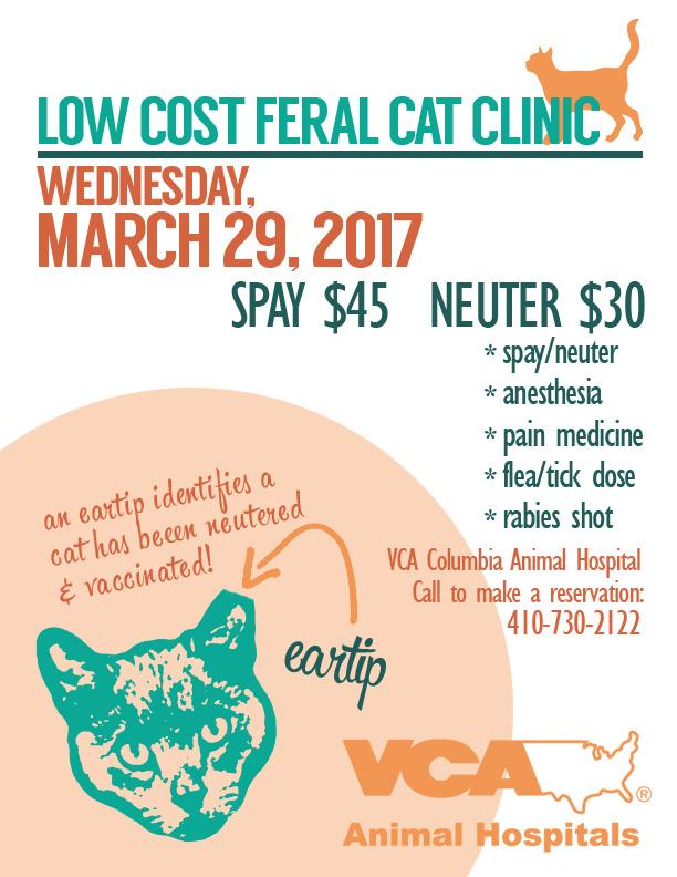 TNR clinic 3-29-17