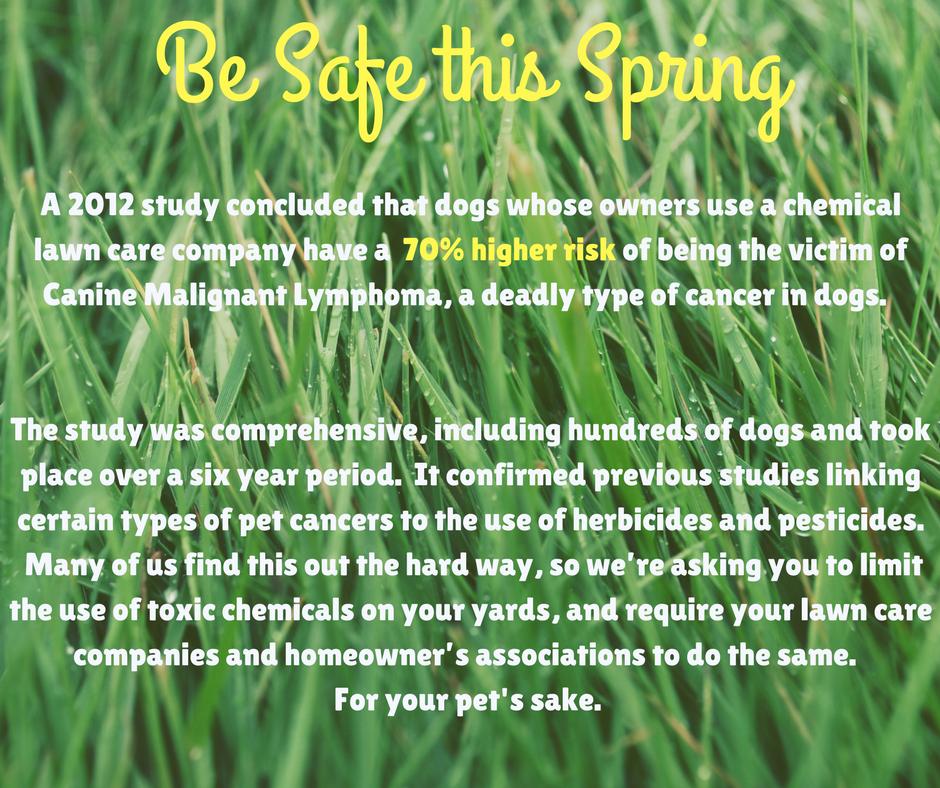 Spring Lawn Blurb