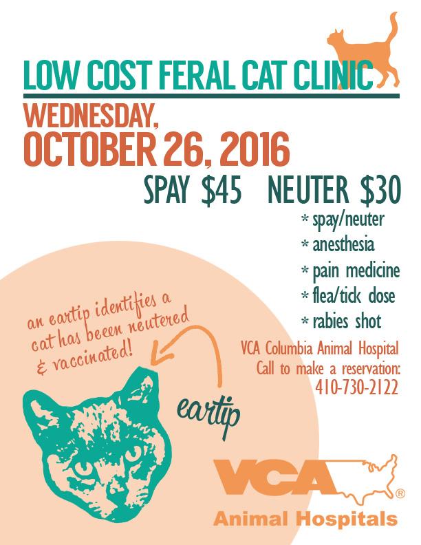 TNR clinic 10/26/16