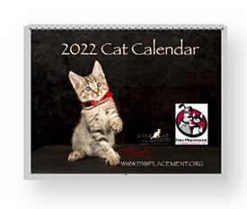 Laura Cervantes 2022 Calendar of Paw Placement Cats