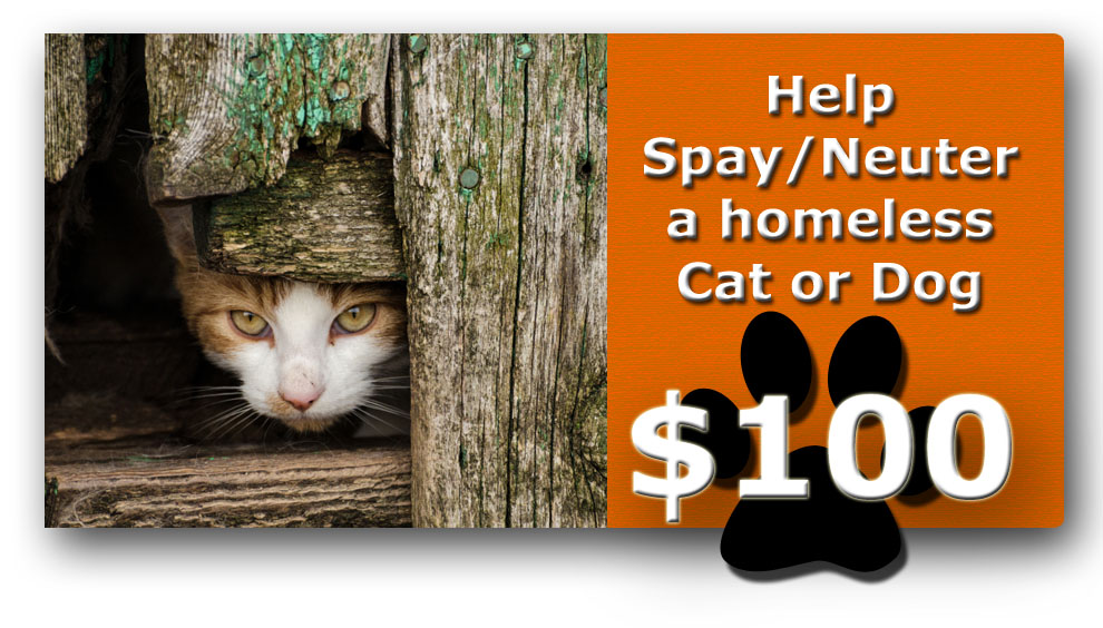 help pay for a cat or dog spay or neuter