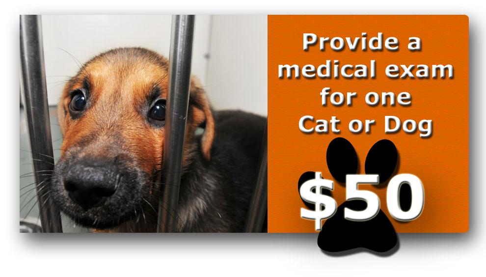 donate for a medical exam