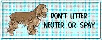 spay/ neuter 2