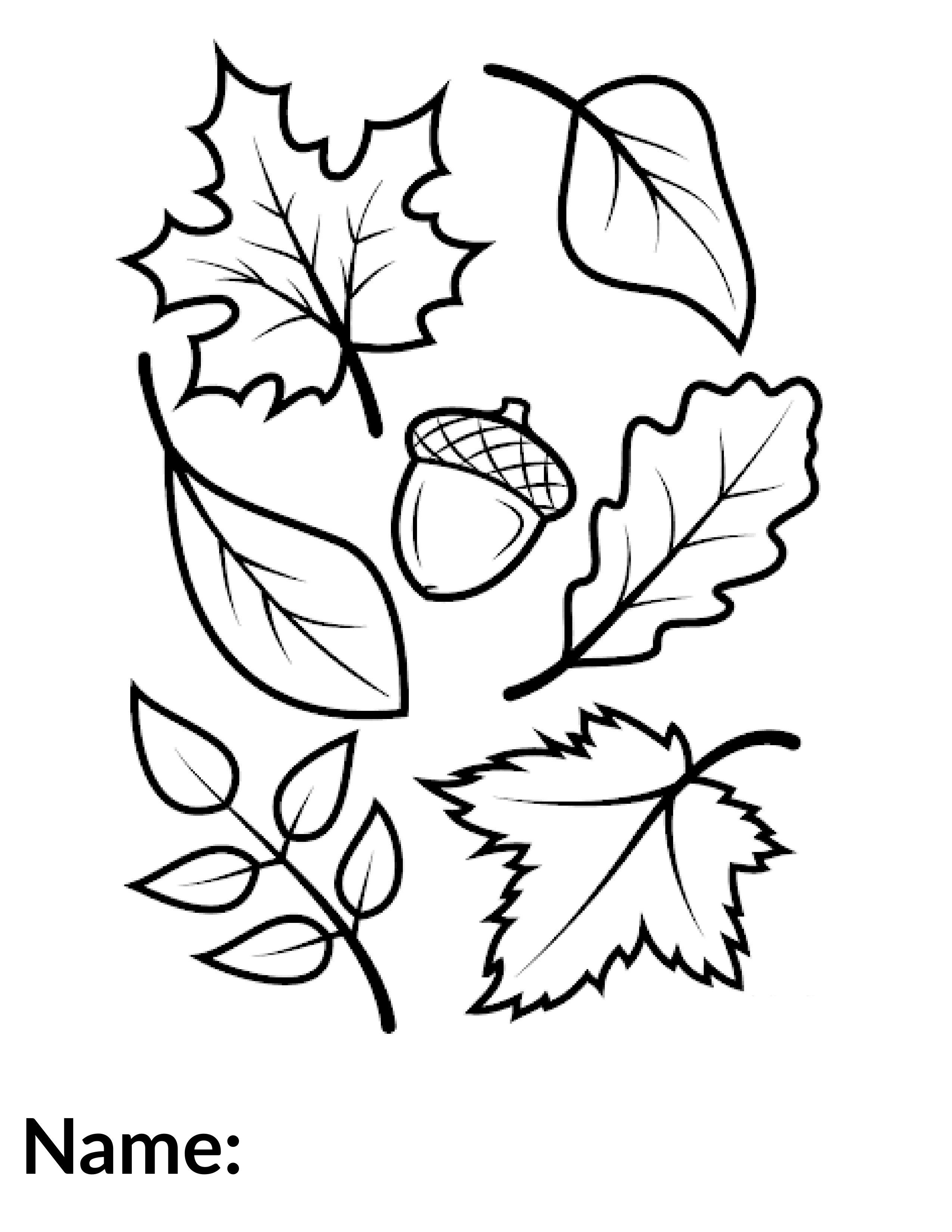 2020 Leaves - Coloring Contest