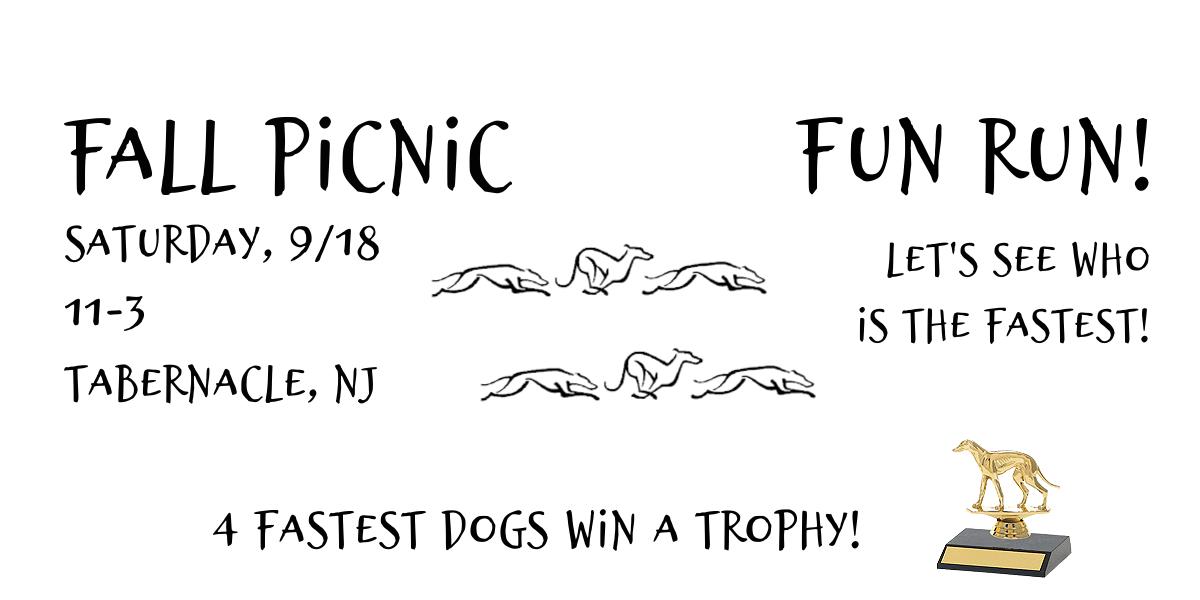 2021 Fall Picnic Fun Run