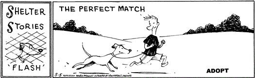 Mutts Adopt Comic