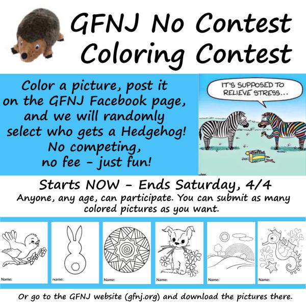 2020 Coloring Contest correct