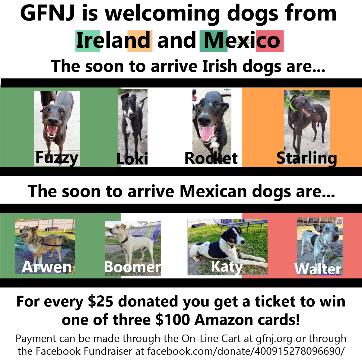 Irish Mexican Dogs1