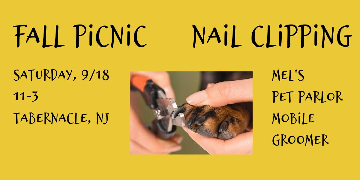 2021 Fall Picnic Nail Clipping