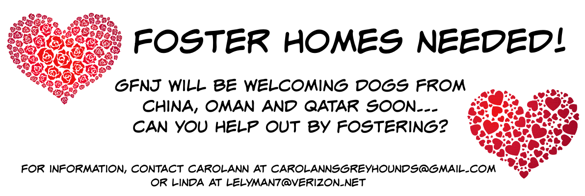 Foster Homes 031921a