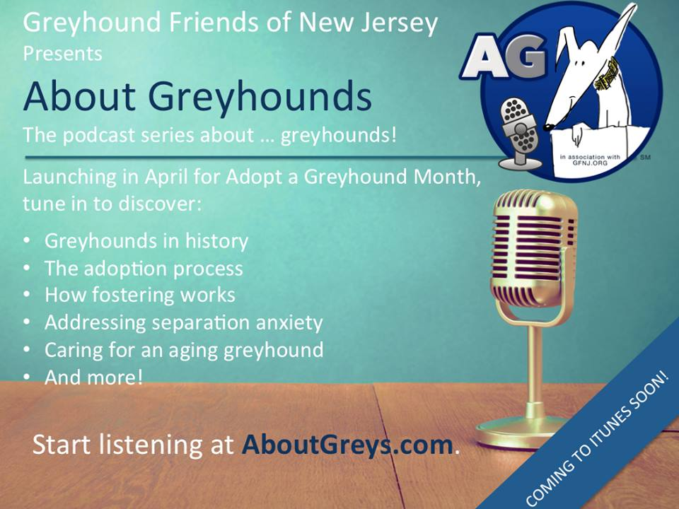 welcome to greyhound friends of nj inc. Black Bedroom Furniture Sets. Home Design Ideas