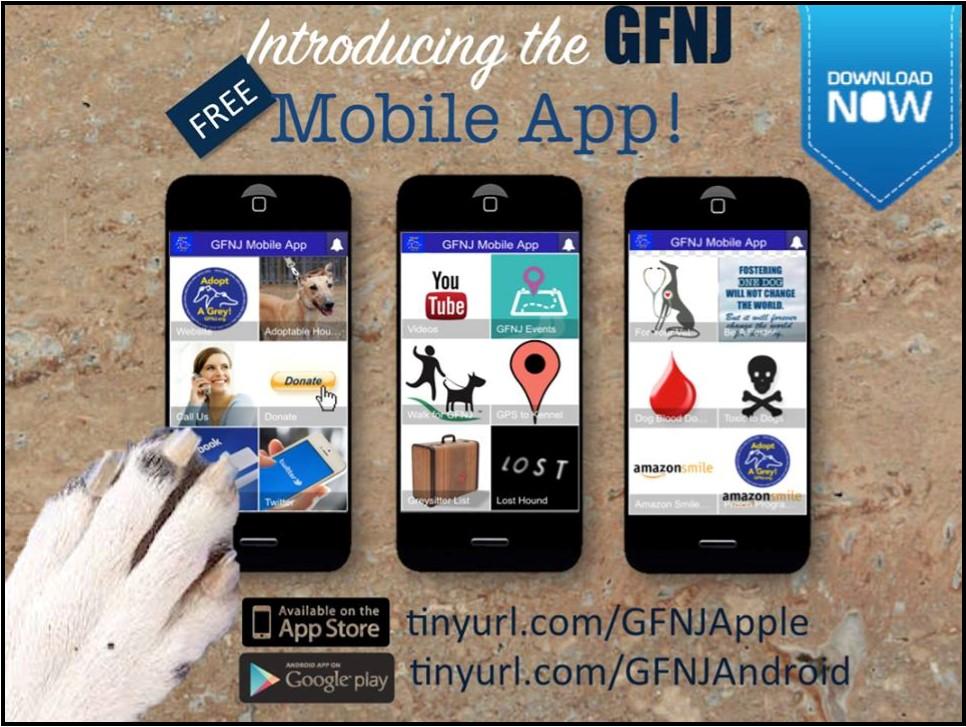 2016 Fall Newsletter Mobile App