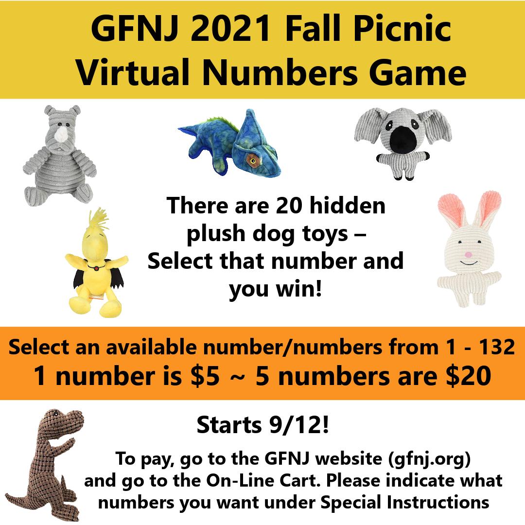 2021 Fall Picnic Virtual Numbers Gamea