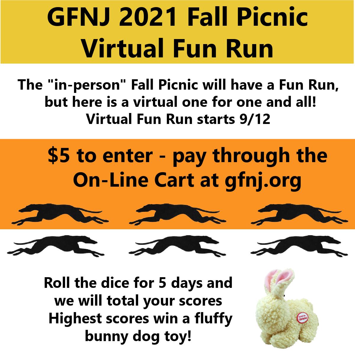 2021 Fall Picnic Virtual Fun Runa