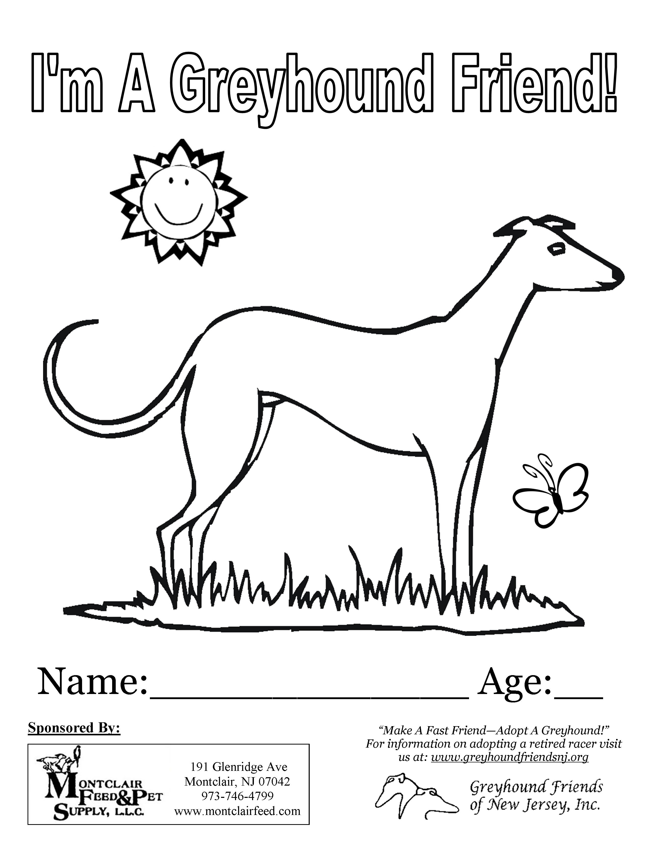 Greyhound Coloring Contest
