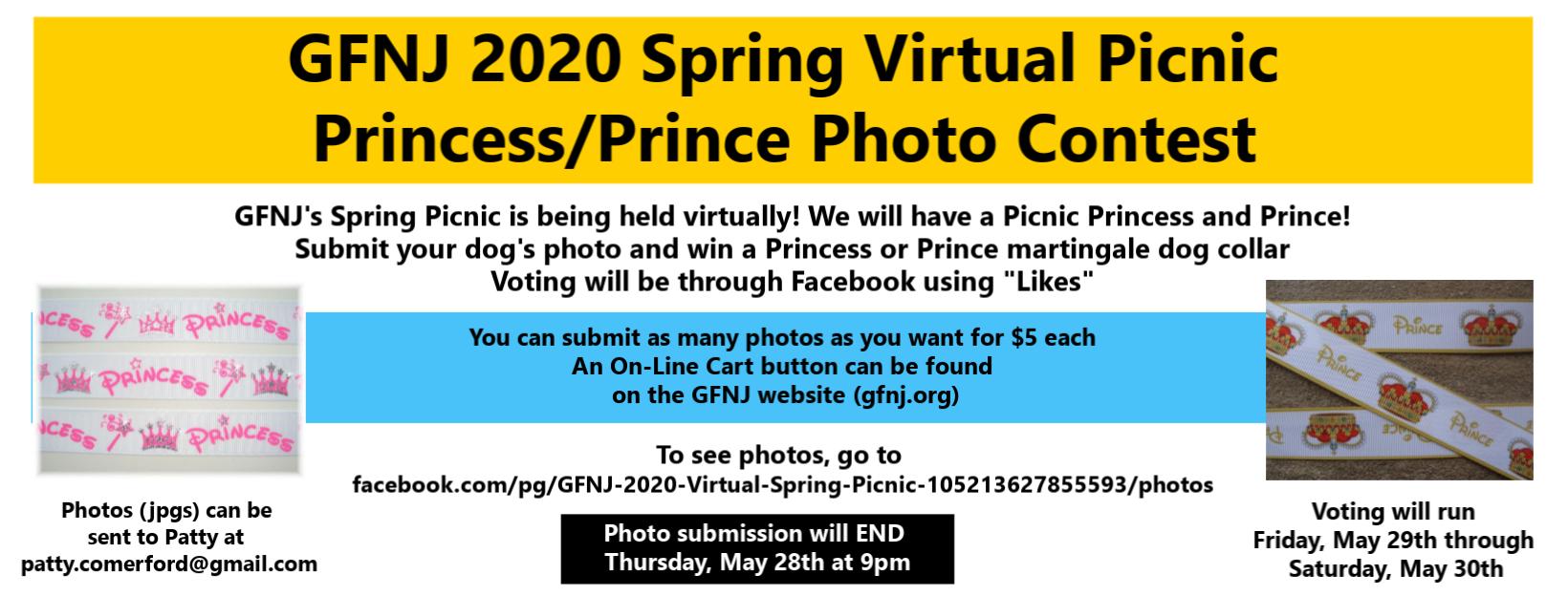 2020 Virtual Picnic Photos Use