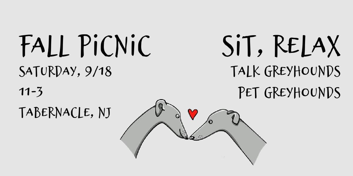 2021 Fall Picnic Sit Talk