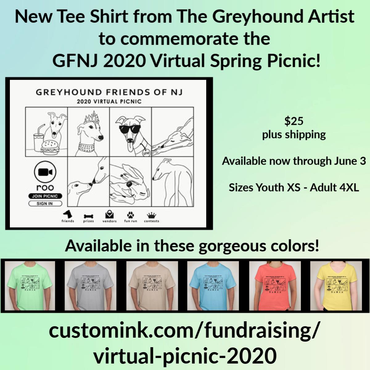 2020 Virtual Picnic Tee Shirt
