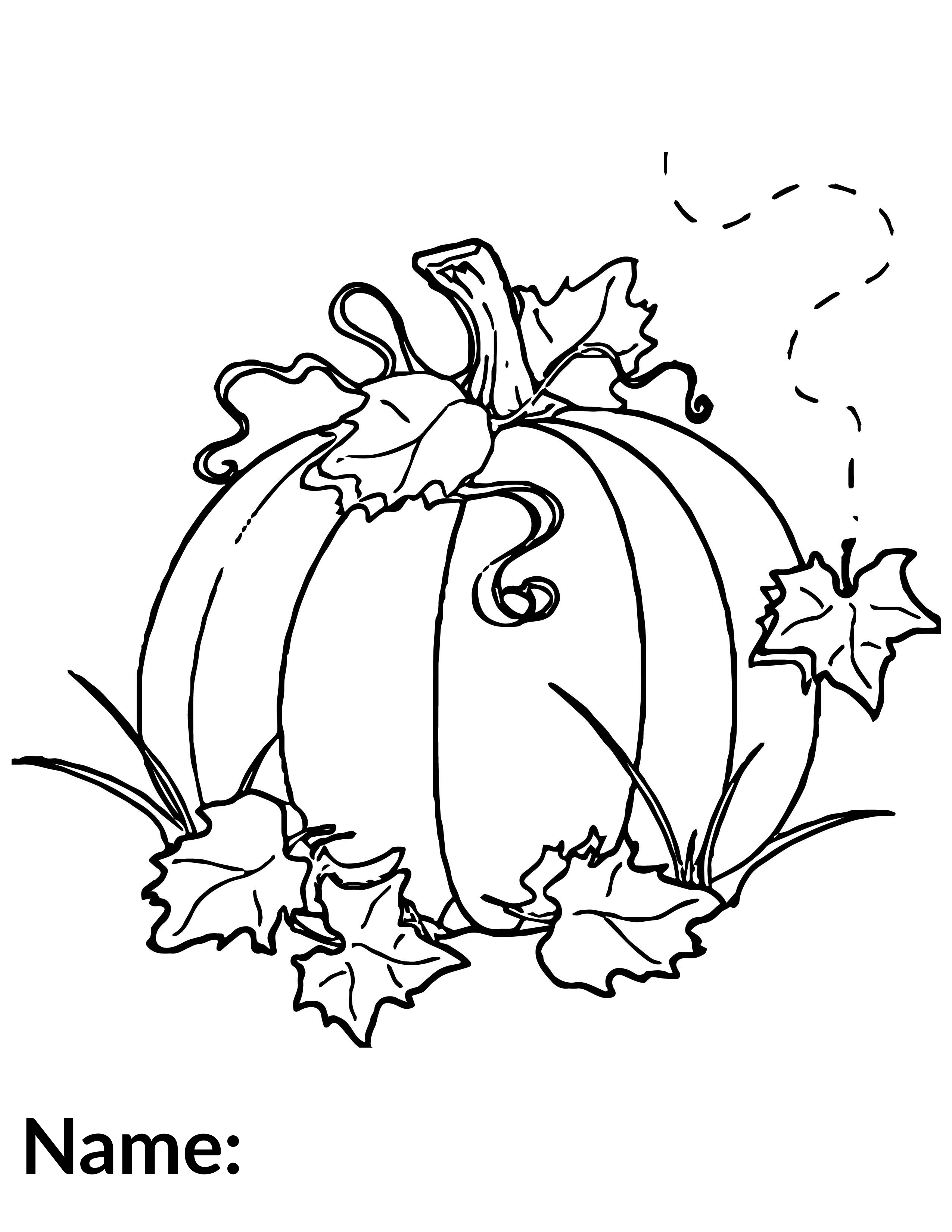 2020 Pumpkin - Coloring Contest