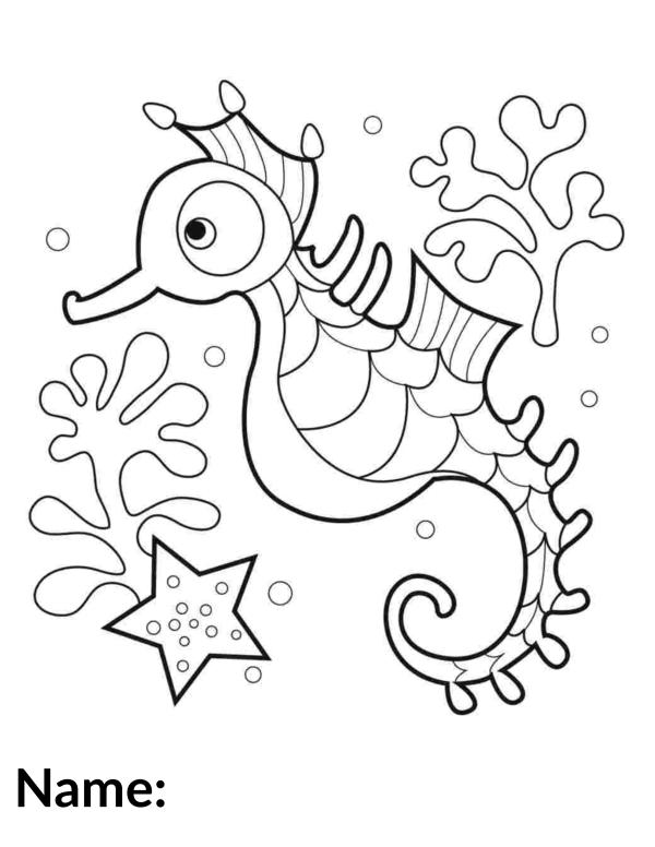 2020 Seahorse