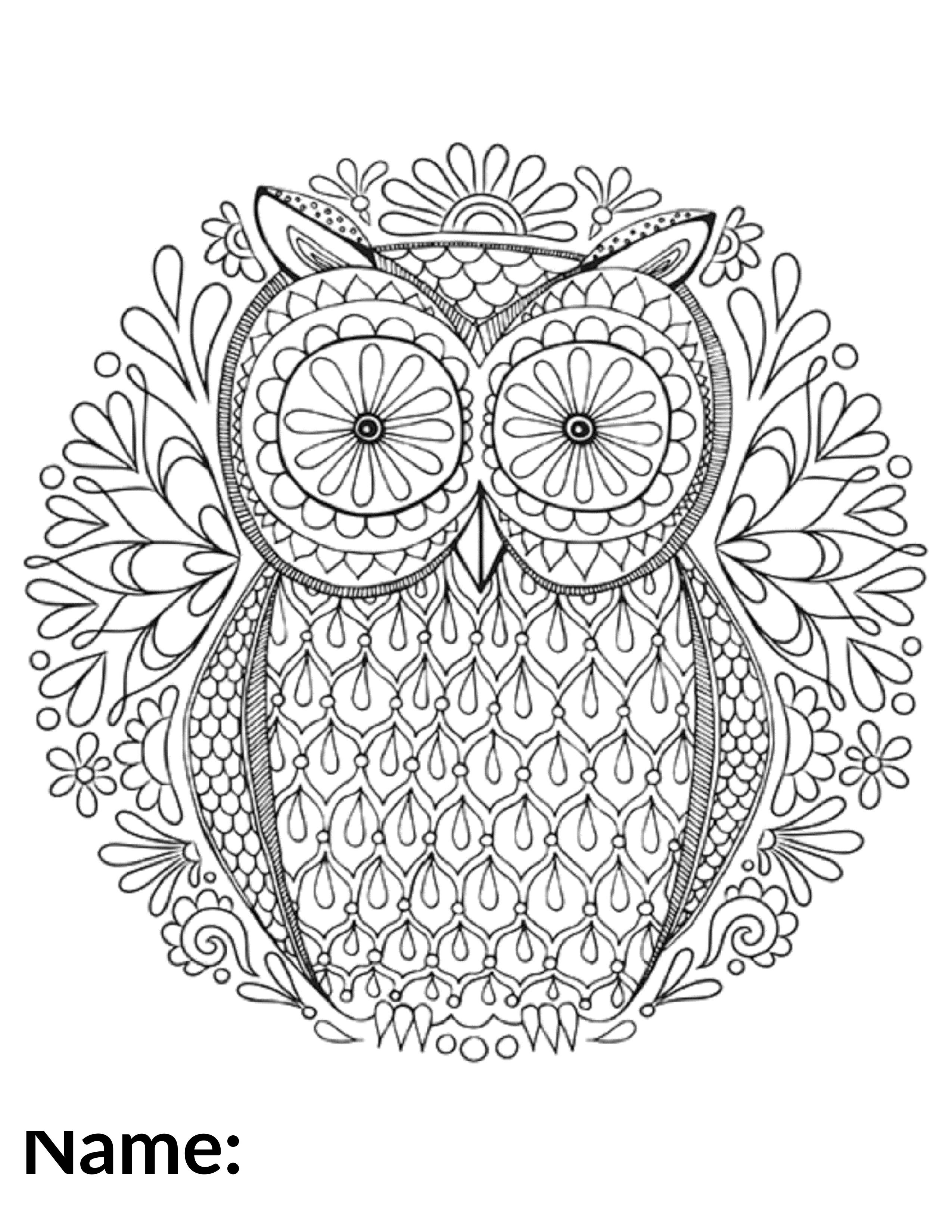 2020 Owl - Coloring Contest