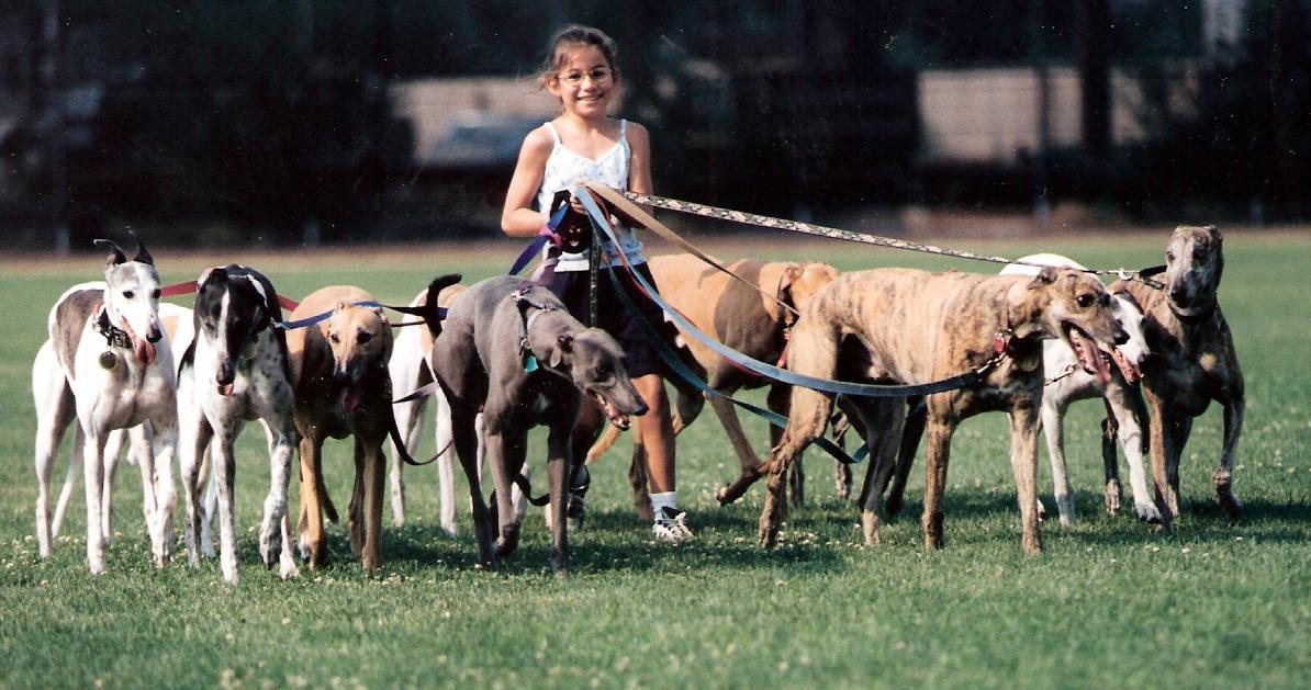 Hannah Walking Dogs Newsletter