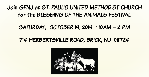 Welcome to Greyhound Friends of NJ, Inc