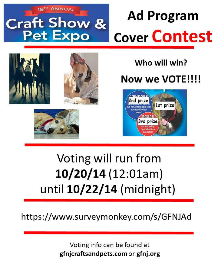 Ad Program Voting