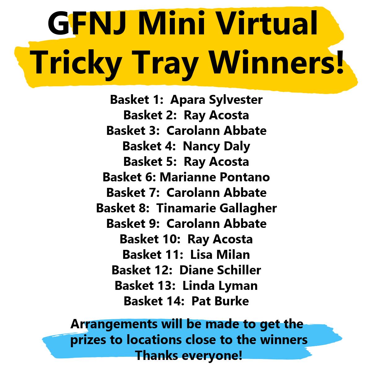Mini TT Winners