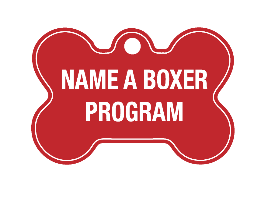 Name a boxer dog tag