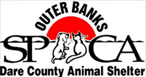 Dare County Logo of The Dare County Animal