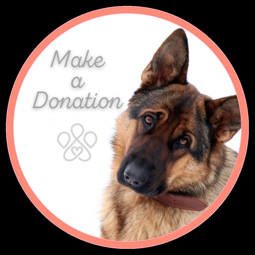DonationButton