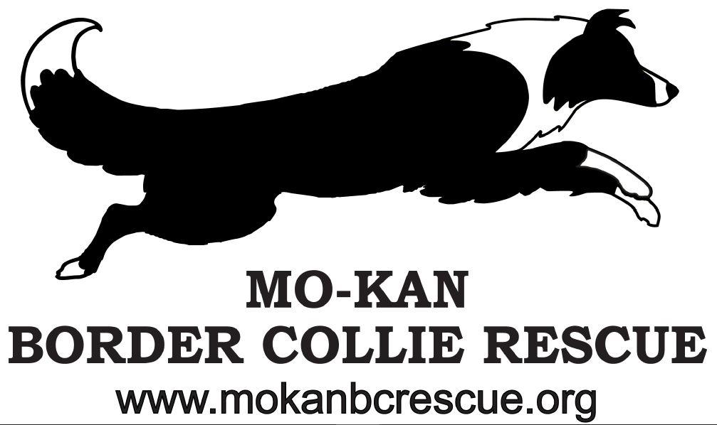 Mo-Kan Border Collie Rescue